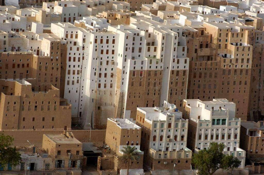 الأجهزة الأمنية بمديرية شبام تلقي القبض على لص متخصص بسرقة بيوت الله .